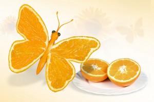 butterfly-697873_640